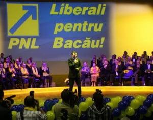 Liberalii condamnaţi în prima instanţă vor fi suspendaţi din partid