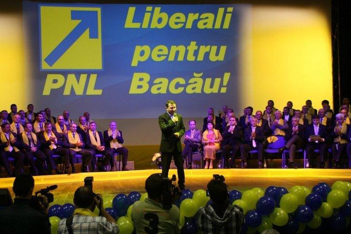 """""""După noi, POTOPUL!"""", sloganul autist cu care urmașii lui Stavarache se pregătesc să defileze în campanie"""