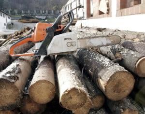 Ministerul Mediului a trimis la Parchet rapoartele de control privind tăierile ilegale de păduri