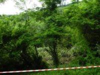 Alunecari de teren in Comanesti: 12 gospodarii au fost evacuate